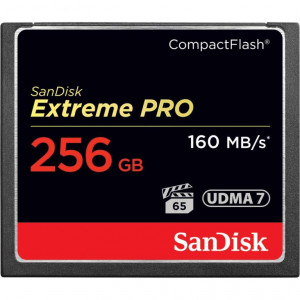 SanDisk Flash Extreme Pro - Card CompactFlash CF - 256GB - fino a160MBps